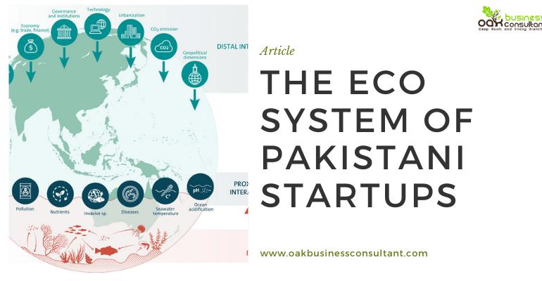 The Eco System of Pakistani_startups