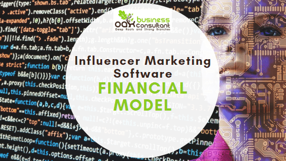 Influencer Marketing Software Financial Model