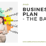 Business Plan - The Basics