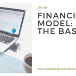 Financial Model Basics