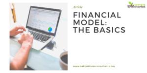 Financial Model The Basics