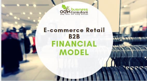 E-commerce Retail B2B Financial Model