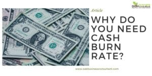 why-do-you-need-cash-burn-rate