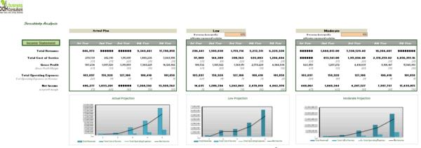 Online Platform for Professional Finance sensitivity analysis