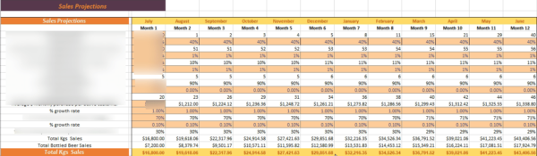 Brewery Financial Model Sales Unit