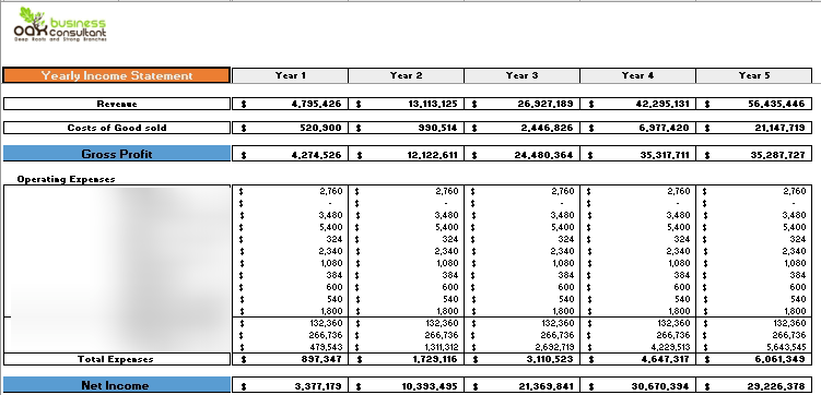 Cold Storage Financial Model Yearly Income Statement
