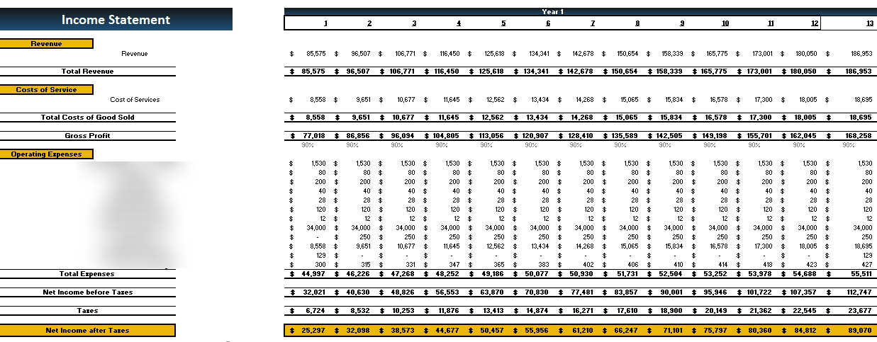 Medical Practice Financial Model Monthly Income statement
