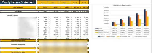 Medical Practice Financial Model Yearly Income Statement