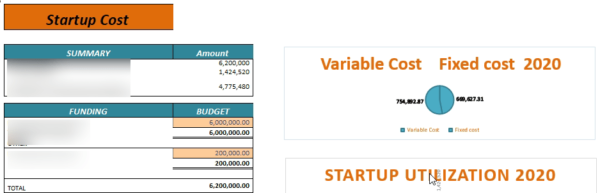 nline Grocery and Delivery Financial Model Startup Summary