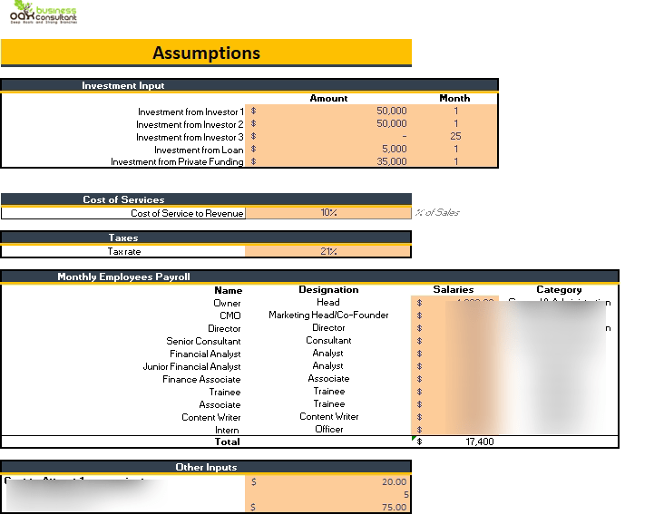 Consultant Agency Financial Model Input sheet