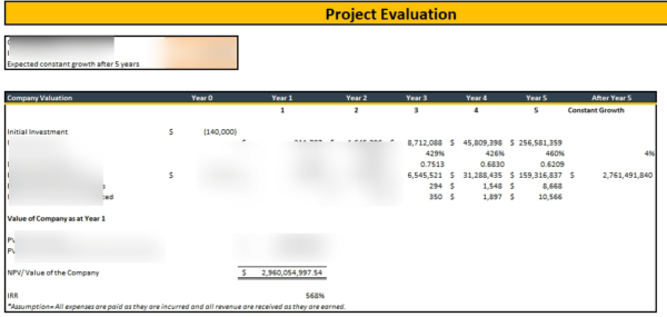 Phone, Tablet , Computer Repair Financial Model Project Evaluation