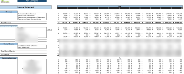 Smart_Hospital_Financial_Monthly_Income_Statement