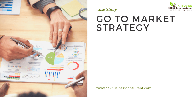 Case Study:  Go-To-Market Strategy for Educational Platform