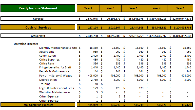 Insurance Agency Yearly Income Statement