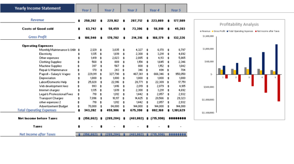 Online Beauty Products Yearly Income Statement