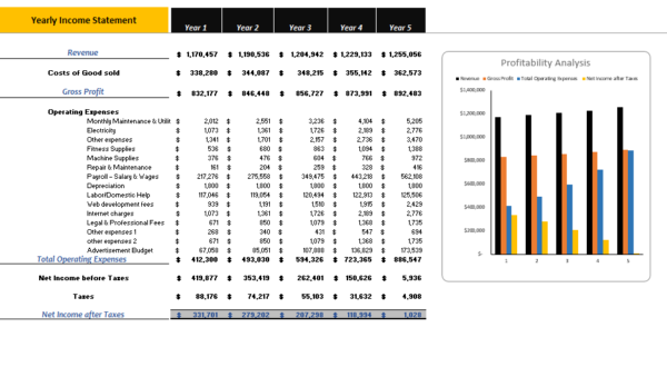 Online_Pet_Store_Excel_Financial_Model_Yearly_Income_statement
