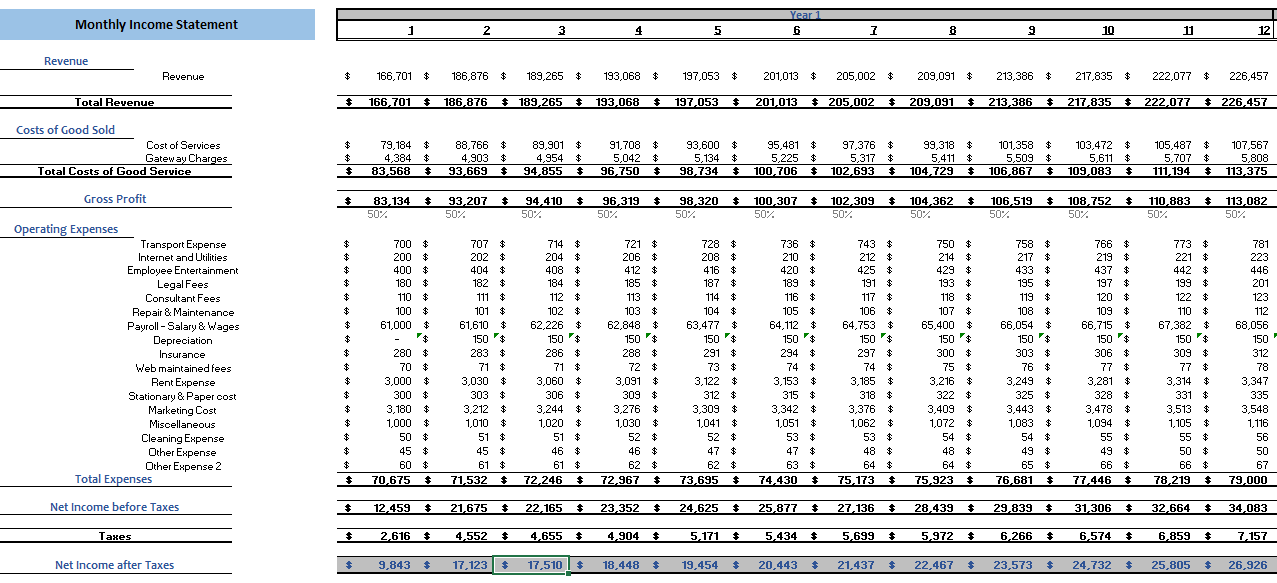 Dropshipping Excel Financial Model Monthly Income Statement