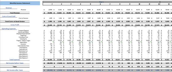 Transcription Services Excel Financial Model Monthly Income Statement