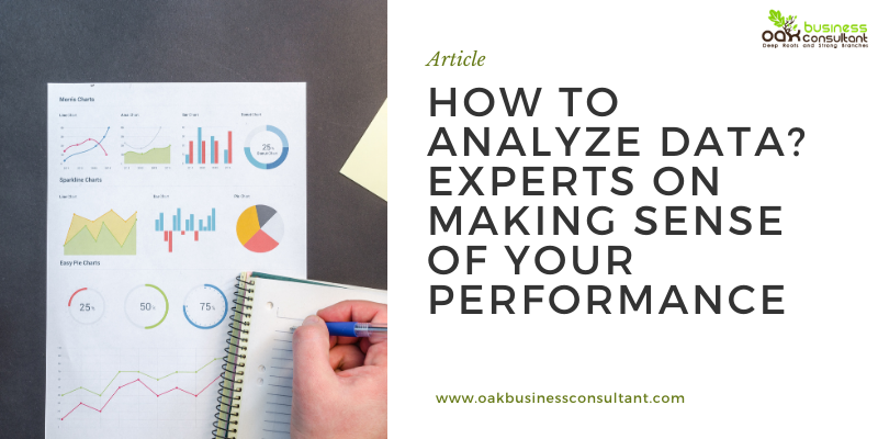How To Analyze Data? Experts On Making Sense of Your Performance