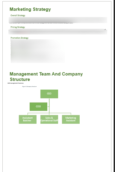 company_structure