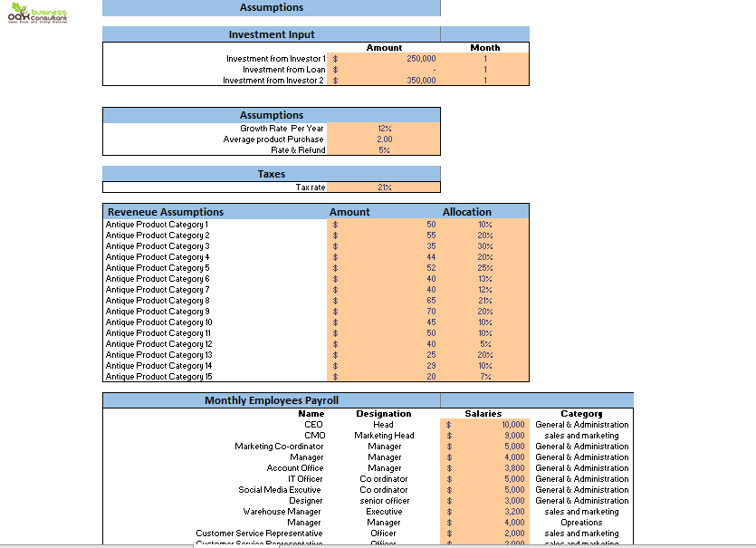 Antique Shop Excel Financial Model Input Sheet