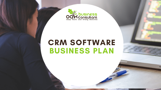 CRM Software Business Plan Cover image