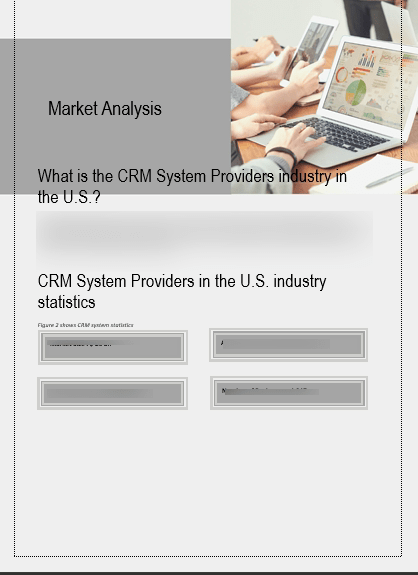 CRM Software Business Plan Market Analysis