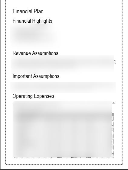 CRM Software Business Plan Revenue Assumptions