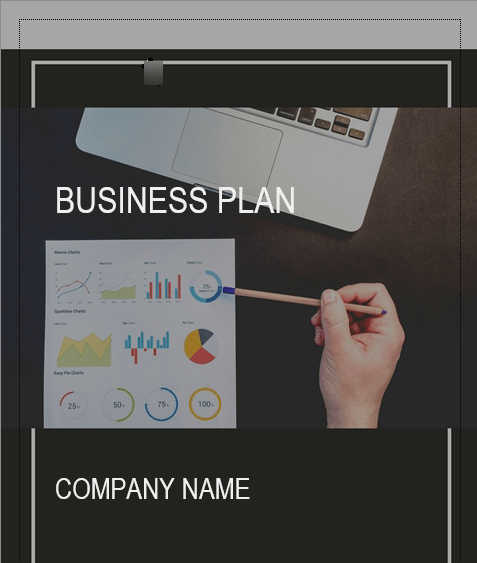 CRM Software Business Plan