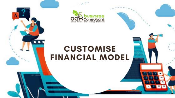 customize financial model