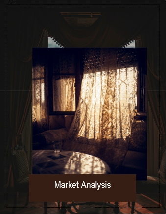 Curtain Business Plan Market Analysis