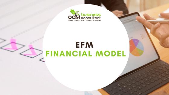 EFM financial model