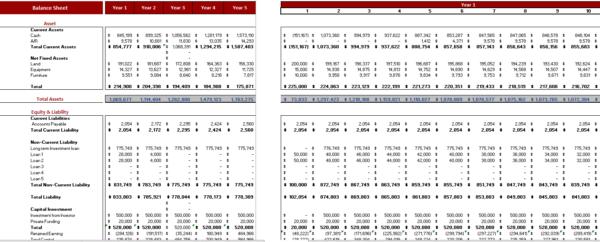 Poultry Farm Excel Financial Model Balance Sheet