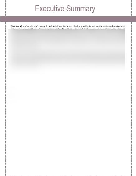 Spa Business Plan Executive Summary
