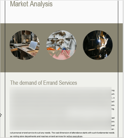 Errand service business plan market analysis