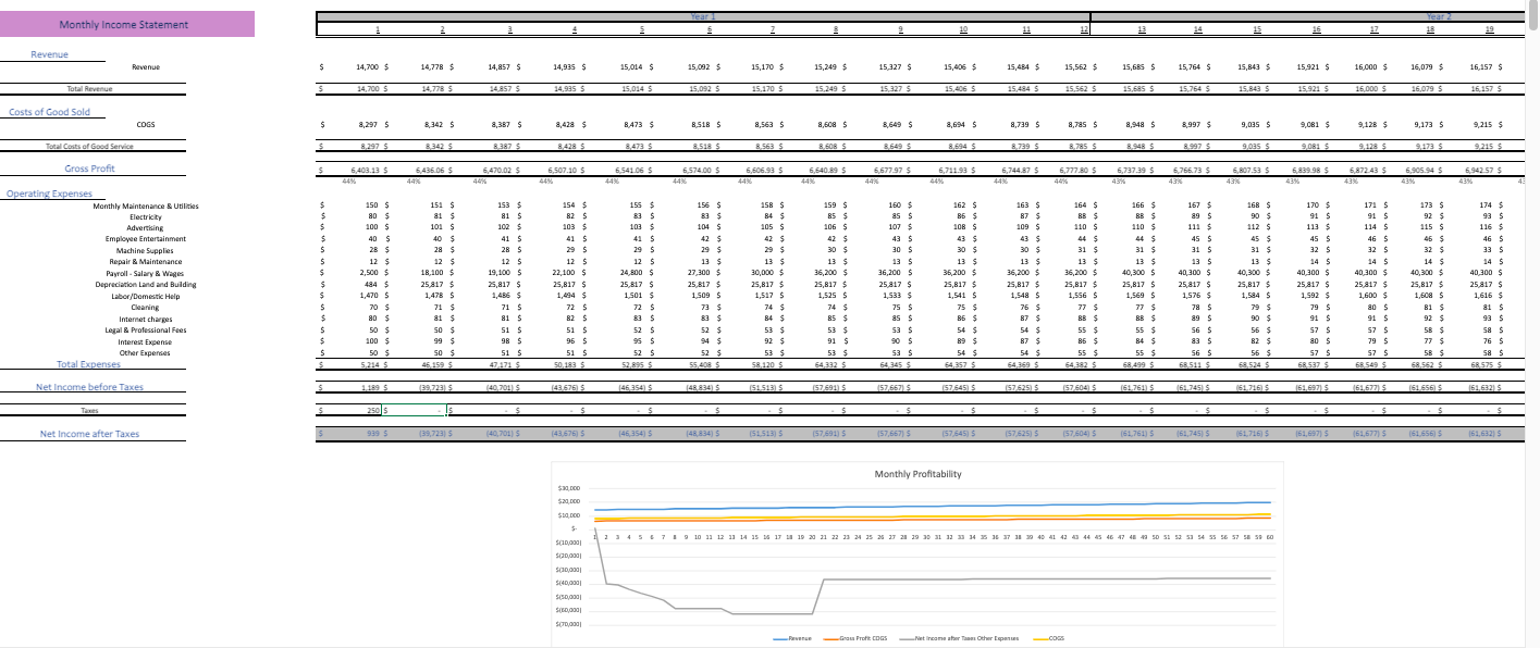 Circus Financial Model Monthly income statement