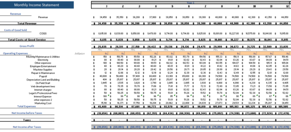 Mobile Development Financial model monthly income statement