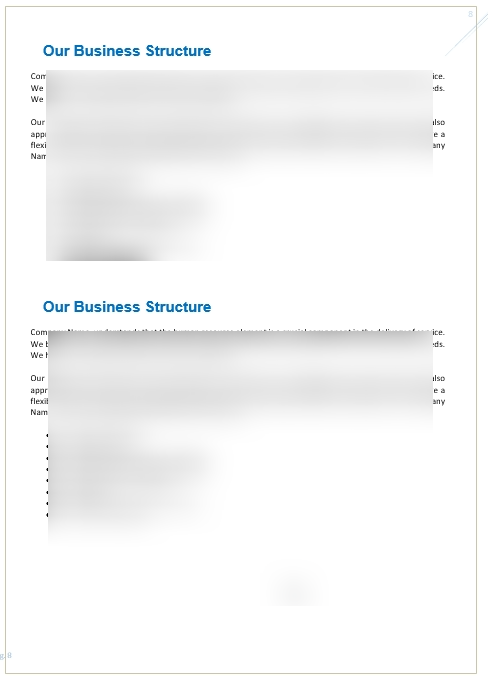 Remote_Tech_Support_Business_Plan_Executive_Summary_2
