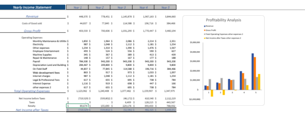 Theme Park Financial Model Yearly Income sheet