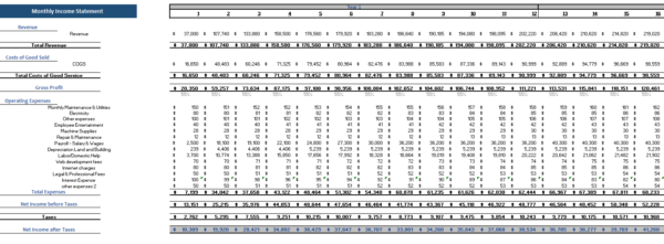 3D Bio Print Excel Financial Model Monthly Income Statement