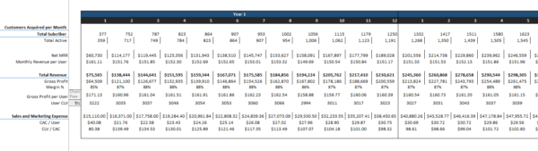 Data Analytics Excel Financial Model CAC