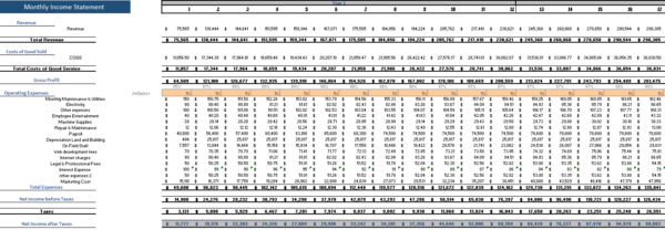 Data Analytics Excel Financial Model Monthly Income Statement