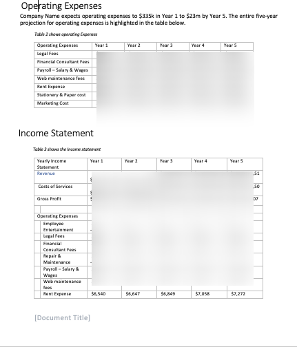 Music Instrument Business Plan expenses