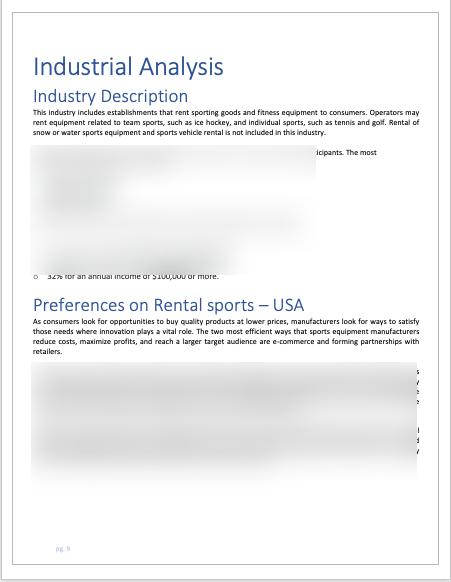 Rental Sports Equipment Business Plan analysis