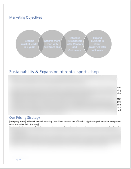 Rental Sports Equipment Business Plan market strategy