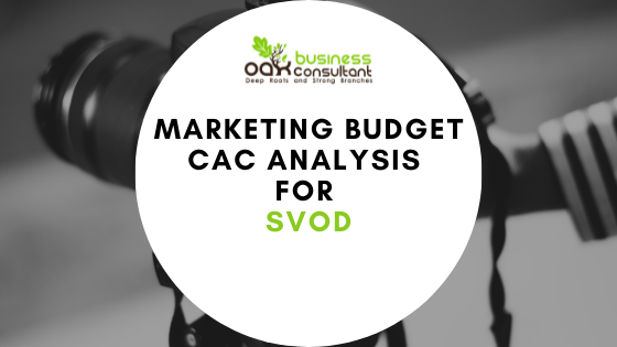Marketing Budget Tool CAC Analysis SVOD
