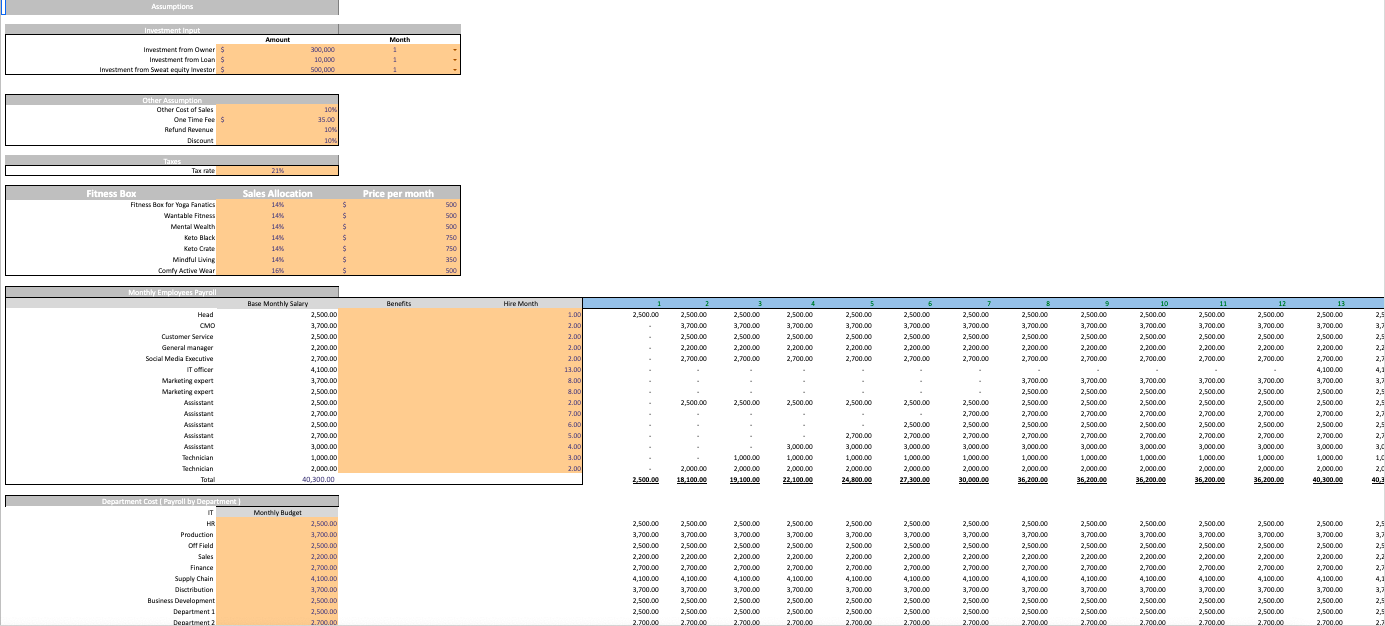 Fitness Subscription Excel Financial Model Template input